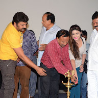 Evaro Nenevaro Movie Audio Launch