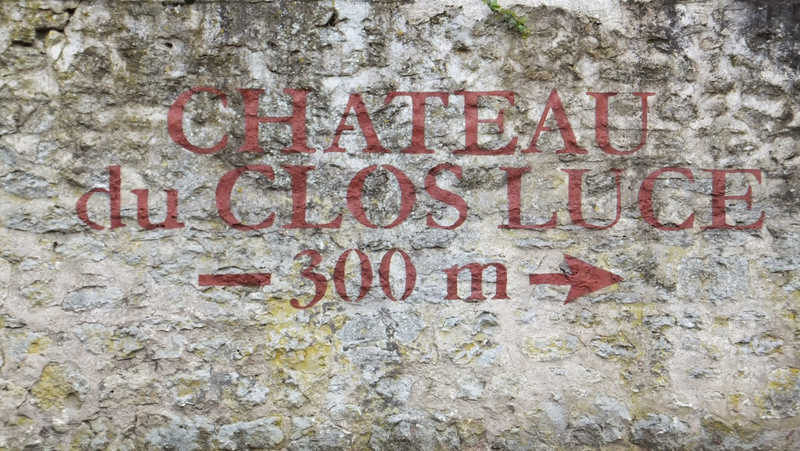 Clos Lucé, Mona Lisa, Amboise, Elisa N, Blog de Viajes, Lifestyle, Travel