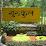 medialiteracy gurukul's profile photo