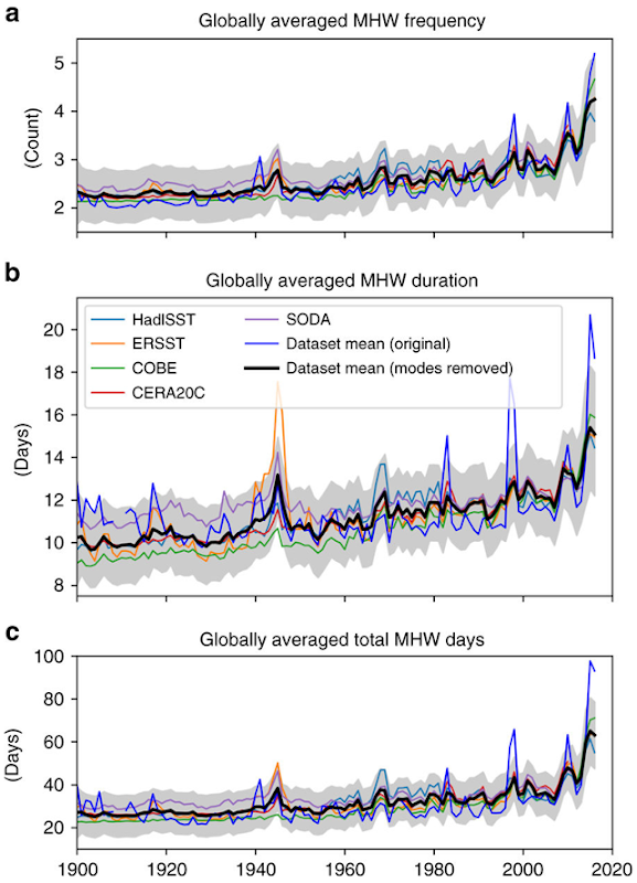Influence of climate modes on marine heatwaves globally. Globally averaged time series of annual (first row) marine heatwave (MHW) frequency, (second row) duration and (third row) total MHW days based on monthly proxies over 1900–2016. Shown are the original results which include the influence of major global-scale climate modes (i.e., ENSO, PDO, AMO; blue lines) and results after the removal of their global signature (thin coloured lines and thick black lines). The shaded areas show the 95% confidence intervals based on model errors, averaged across proxy data sets (taking into account temporal covariance; after removal of climate modes). Graphic: Oliver, et al., 2018 / Nature Communications