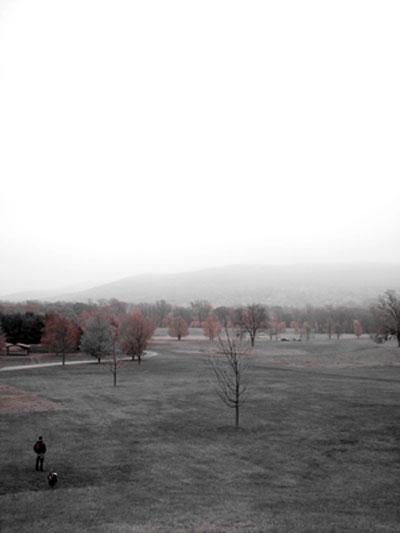 Winter Selections - IMG_9233.jpg