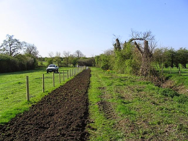 Grassfield Footpath - Hedge Planting - 8276828510233_0_BG.jpg