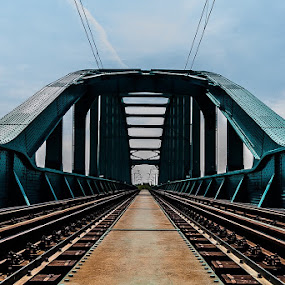 H E N D R I X by Iva Marinić - Buildings & Architecture Bridges & Suspended Structures ( bridge, railway, photography, architecture, train )