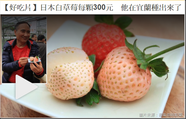白草莓-蘋果新聞