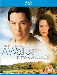 A Walk in the Clouds - Dạo bước trên mây