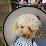 偉陞江(阿陞)'s profile photo