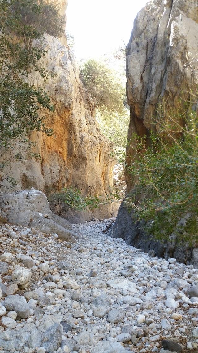 Gorge of Kritsa