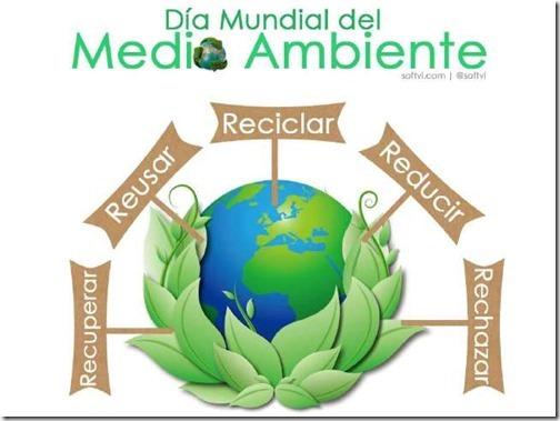 dia del medioambiente (3)