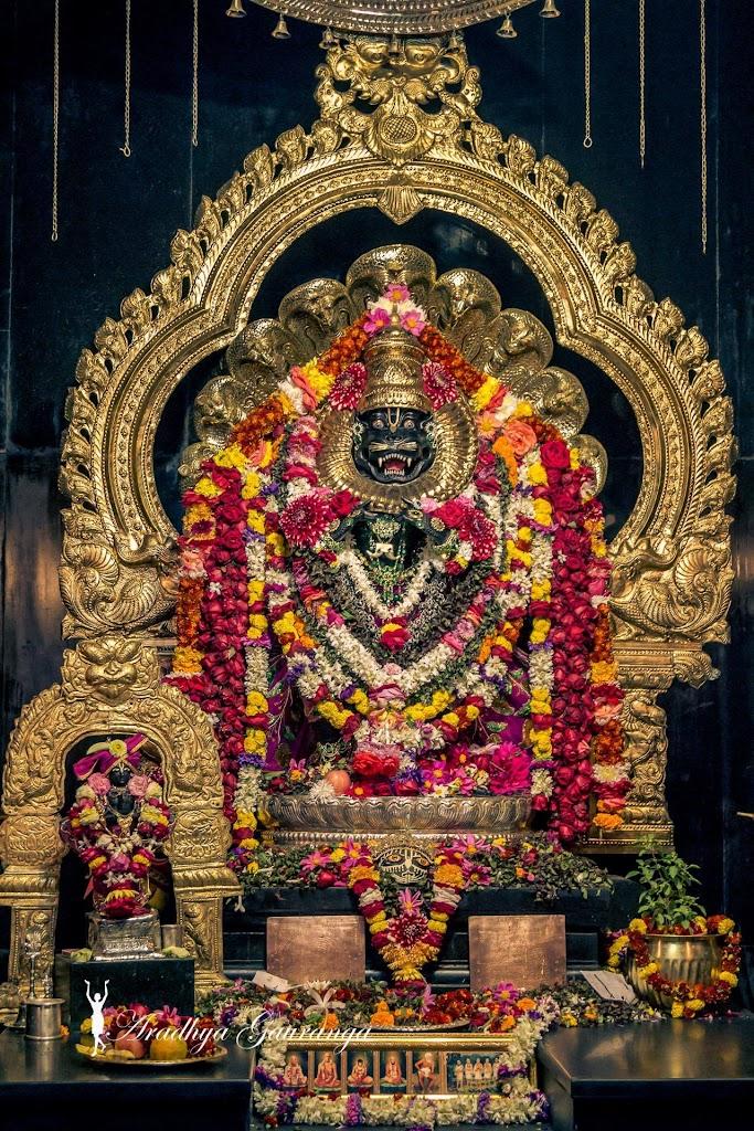 ISKCON Mayapur Deity Darshan 20 Jan 2017 (10)