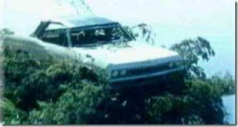 Chevrolet Impala Sur un arbre perché