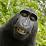 Jorge R.'s profile photo