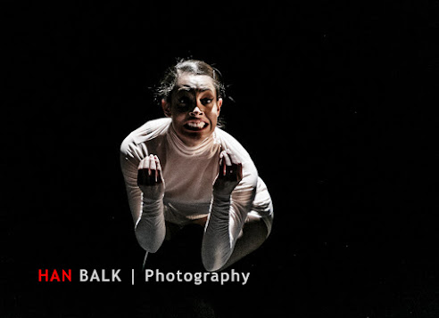 Han Balk Wonderland-7736.jpg