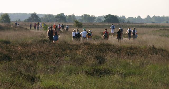 Marche Kennedy (80km) de Someren (NL): 7-8 juillet 2012 IMG_5464