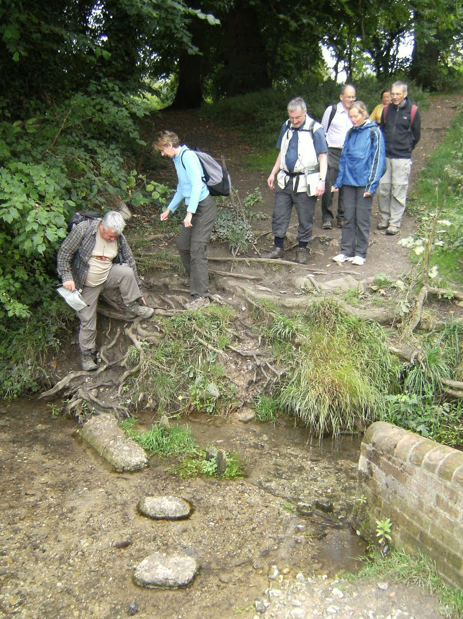 DSCF9356 Braving the stepping stones in Audley Park