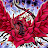 Jotham Callaway avatar image