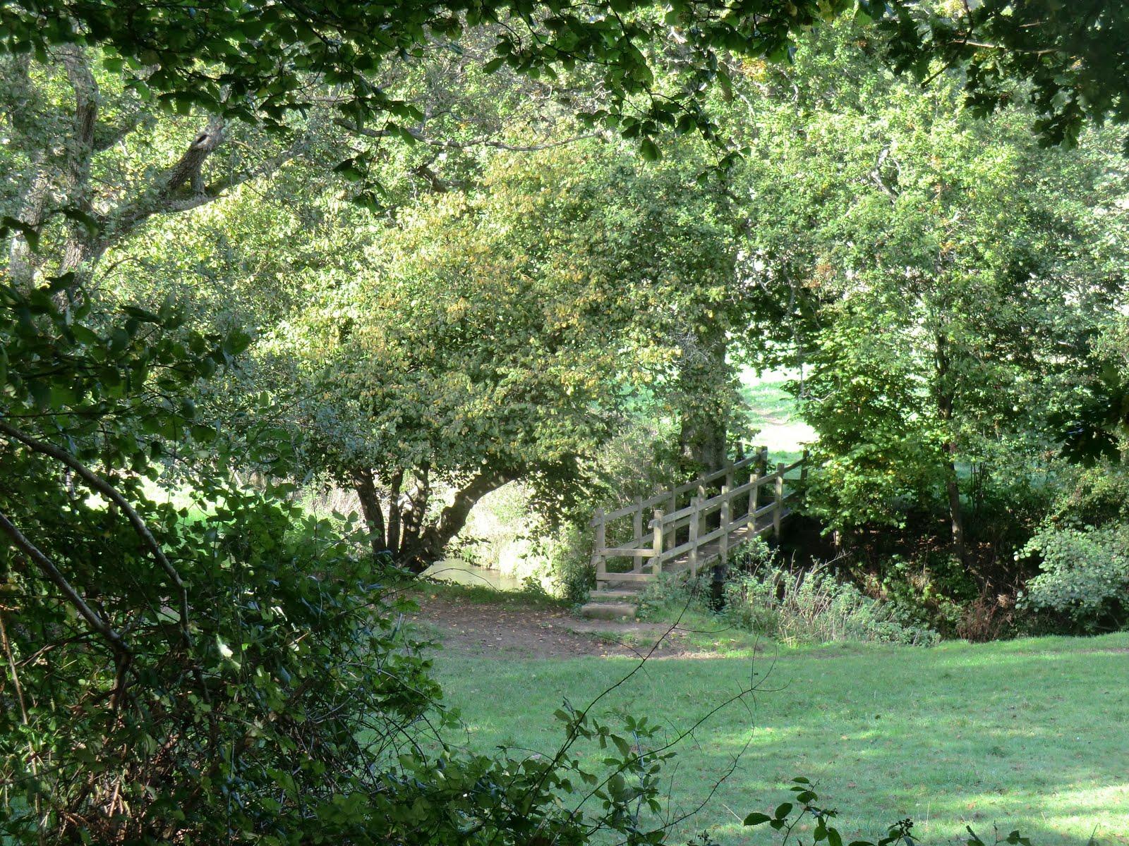 CIMG0696 Footbridge over the River Medway