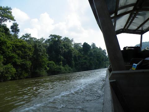 テンベリン川を遡る