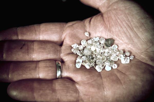 As pedras de sapo de Port Nolloth