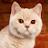 Ricky Hung avatar image