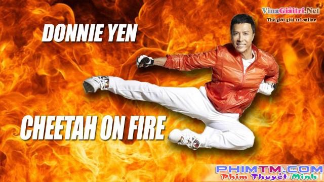 Xem Phim Liệp Báo Hành Động - Cheetah On Fire - phimtm.com - Ảnh 1
