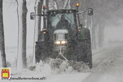 eerste sneeuwval in overloon 07-12-2012  (2).JPG