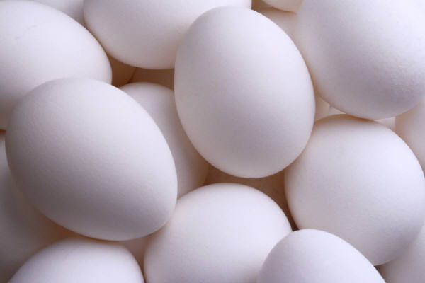 Health Benefits of Egg