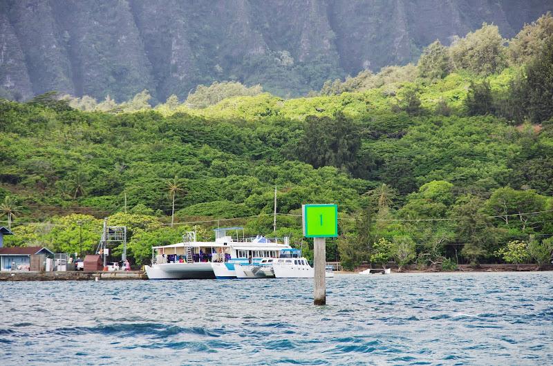 06-18-13 Waikiki, Coconut Island, Kaneohe Bay - IMGP7021.JPG