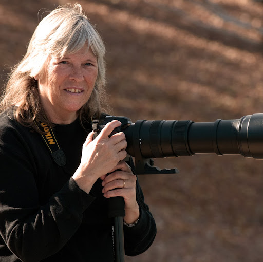 Barbara Amato Photo 20