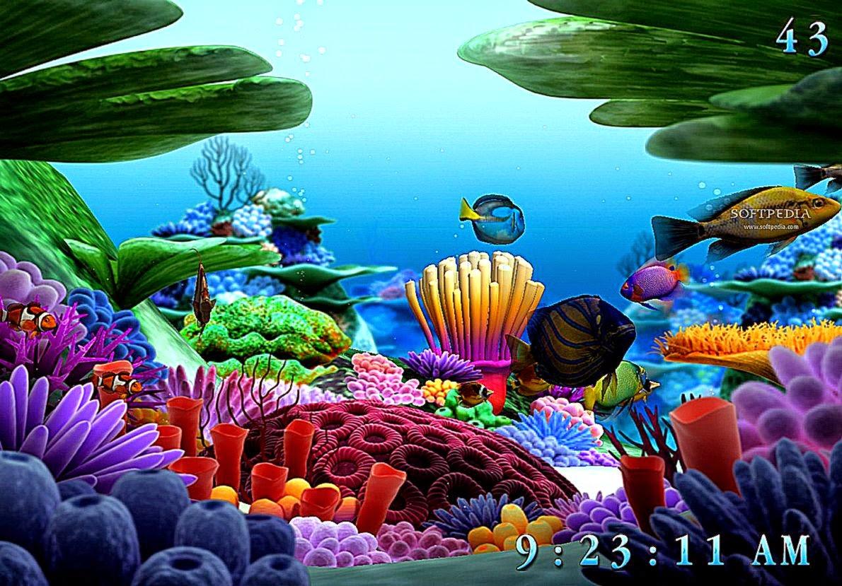 Best Free Hd Wallpaper 3d Sea Life Screensaver Wallpaper