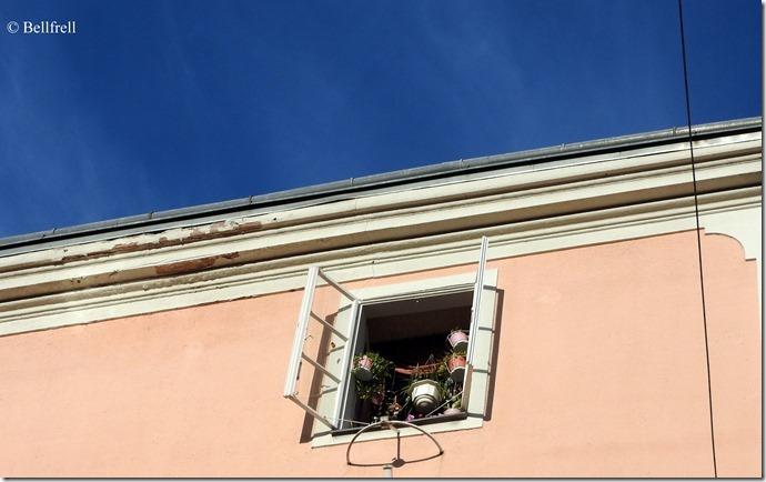 Blumenfenster Kaigasse
