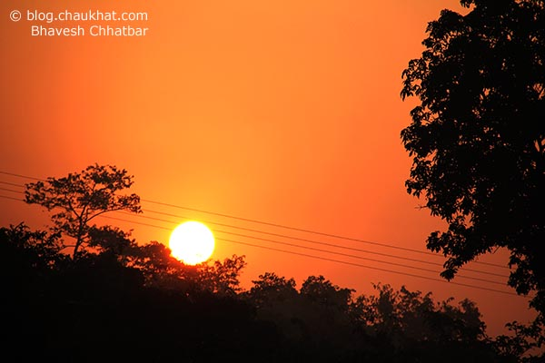 A beautiful morning in Konkan with a perfect sunrise and silhouettes - one of the most amazing times
