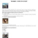 GRA PLANSZOWA POTYCZKI Z BAŻANTEM_10.jpg