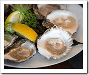 Platte zeeuwse oester Ostera edulis