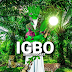 🧿 ❌ ➕ Ancient Igbo Masculine And Feminine Energy Forces Of The Universe And BIBLICAL TRADITIONS OF IGBOS BEFORE THE MISSIONARIES CAME TO Africa - IGBO