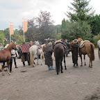 paarden4daagse Zorgvliet 2012 048.jpg