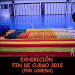 EXHIBICIÓN FIN DE CURSO 2012
