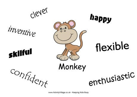 monkey_characteristics