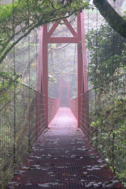 Scenery - Costa Rica - Cloud%2Bforest%2Bbridge_%2B1999.jpg