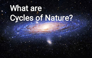What are the Cycles of Nature?