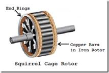 squirrel cage rotor type induction motor