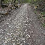 Forêt de Carnelle : chemin empierré