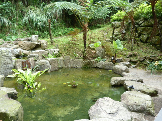 TAIWAN.Dans la région de Miaoli - P1080445.JPG