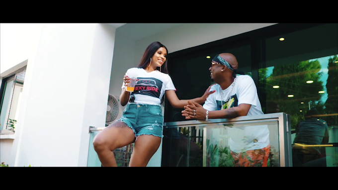 VIDEO | Lulu Diva Ft. Mr Blue – Naogopa| Download new song