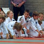 budofestival-judoclinic-danny-meeuwsen-2012_09.JPG