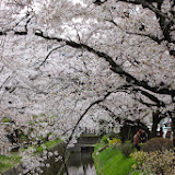 2014 Japan - Dag 8 - marjolein-IMG_1148-0049.JPG