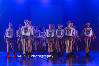 Han Balk Voorster Dansdag 2016-4613-2.jpg
