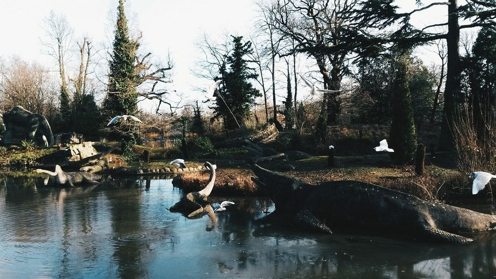 crystal-palace-park-dinosaurs-13