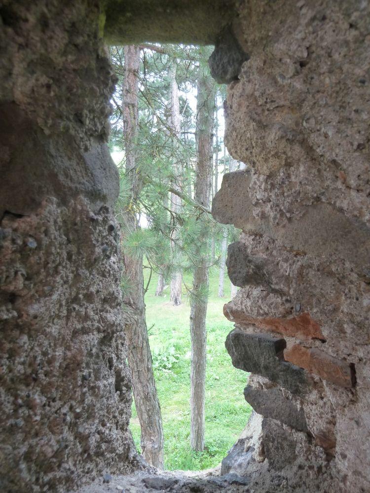 Székelyzsombori tábor 2015 2. turnus - zsombor067.jpg