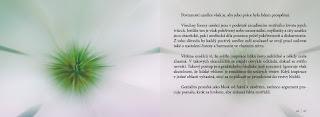duse_a_umeni_001-22-kopie
