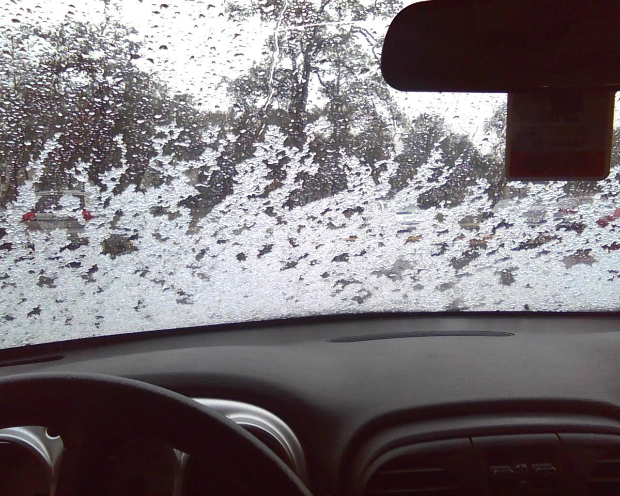 Snow Day - Photo12041152.jpg